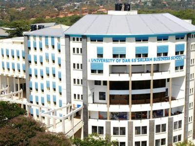 AABD launches first mentoring program with UDBS (Tanzania)